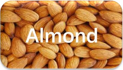 Almond-extraction