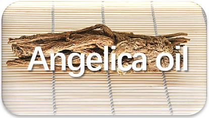 Angelica-oil-extraction