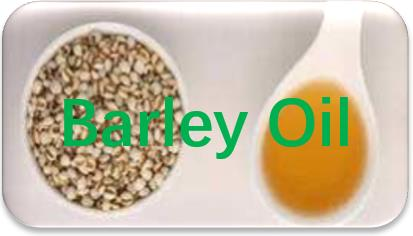 Barley-Oil-extraction