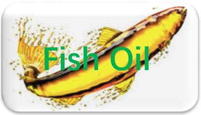 Fish-Oil-extraction