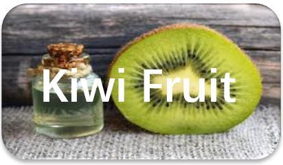 Kiwi-Fruit-oil-extraction