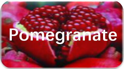 Pomegranate-seed-extraction