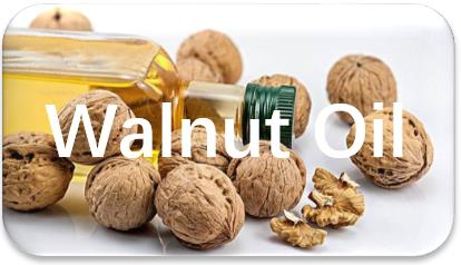 Walnut-Oil-extraction