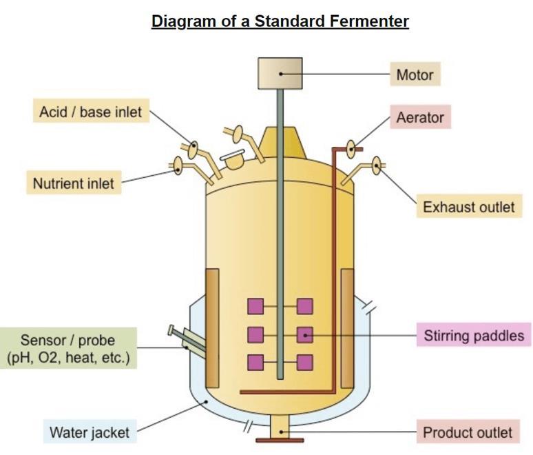 bioreactor-design